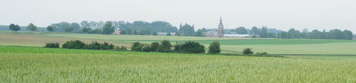Haplincourt